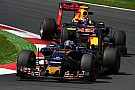 Toro Rosso doesn't need Red Bull to create good car - Sainz