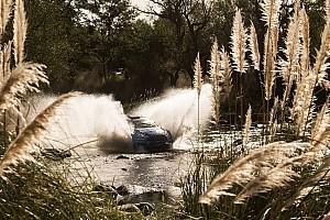 WRC Special feature Argentina WRC: Motorsport.com's driver ratings