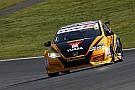 BTCC Brands Hatch BTCC: Shedden beats Tordoff to win title