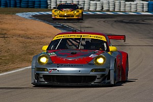 Flying Lizard preview