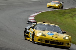 Corvette Racing Mid-Ohio Qualifying Report