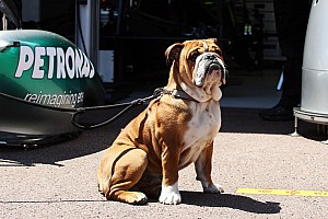 Hamilton, Lauda slam 'Roscoe' critics