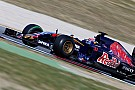 Verstappen says Toro Rosso form very promising