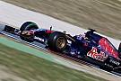 Verstappen says Toro Rosso form very promising