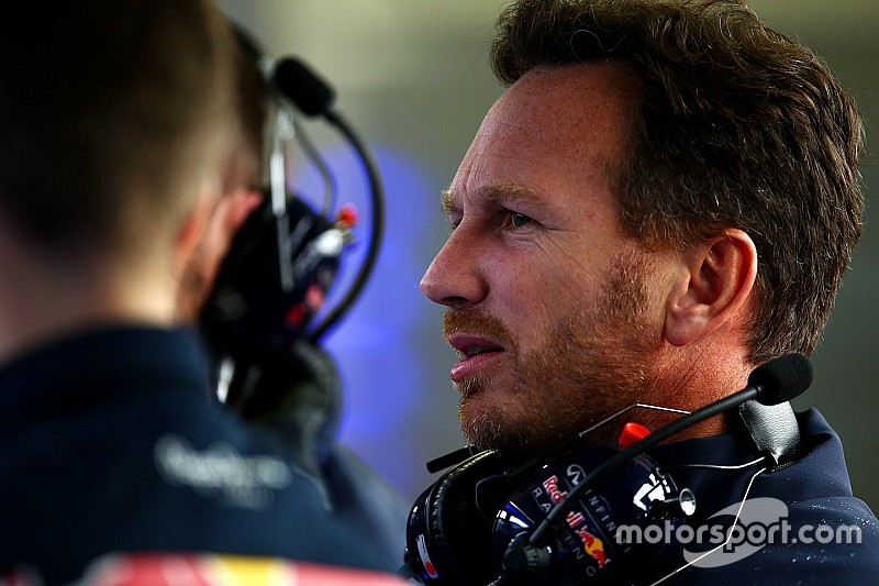 Horner coy on Honda engine rumours