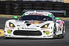 Riley Motorsports to defend their Rolex 24 at Daytona GTD victory in No. 93 Dodge Viper GT3-R