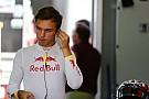 Super Formula Red Bull начала искать Гасли место в Японии