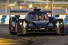 IMSA LMP2-Spezialist Rene Rast startet beim Daytona 24
