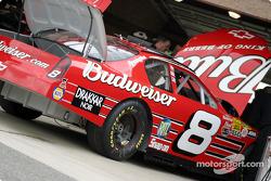 Dale Earnhardt Jr.'s car
