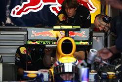Adrian Newey, Red Bull Racing, Technical Operations Director takes a look at the aero paint at the rear of the car