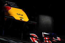 Red bull nose, detail