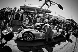 Pit stop for #10 Team Oreca Matmut Peugeot 908 HDi FAP: Nicolas Lapierre, Nicolas Minassian, Marc Gene