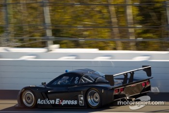 #5 Action Express Racing Chevrolet Corvette DP: David Donohue, Darren Law