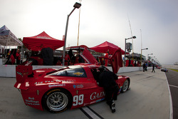 #99 GAINSCO/Bob Stallings Racing Chevrolet Corvette DP