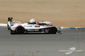 #5 Muscle Milk Pickett Racing Oreca FLM09: Mike Guasch, Memo Gidley, Archie Hamilton