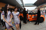 Kw girls and Norbert Michelisz, BMW 320 TC, Zengˆ Motorsport
