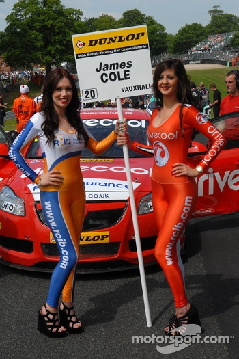 RCIB Insurance/Drive Cool Grid Girl