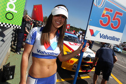 Darryl O'Young, BMW E90 320 TC, ROAL Motorsport and Grid Girl