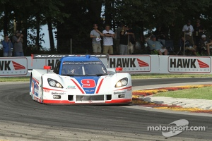 #9 Action Express Racing Corvette DP: Burt Frisselle, Brian Frisselle