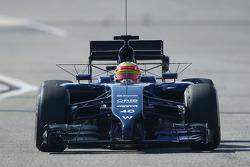 Felipe Nasr, Williams FW36 Test and Reserve Driver running sensor equipment
