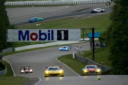 Moss Corner to Mario Andretti Straightaway