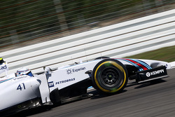 F1: Susie Wolff, Williams Development Driver