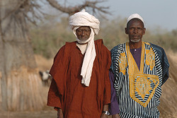 Scene in Sénégal