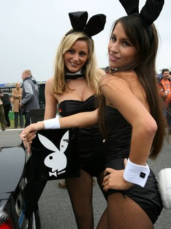 Lovely Playboy bunnies