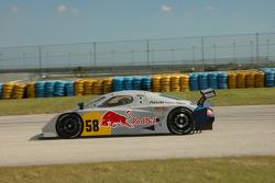 #58 Red Bull/ Brumos Racing Porsche Fabcar: David Donohue, Darren Law