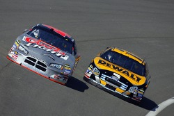 David Stremme and Matt Kenseth