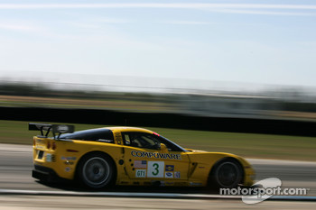#3 Corvette Racing Corvette C6-R: Ron Fellows, Johnny O'Connell, Max Papis