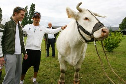 Scott Speed, Scuderia Toro Rosso and Vitantonio Liuzzi, Scuderia Toro Rosso with a big cow
