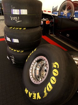 Rear tires for Melanie Troxel
