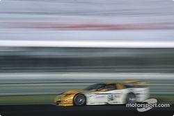 #64 Chevrolet Corvette C5-R: Andy Pilgrim, Kelly Collins, Franck Fréon