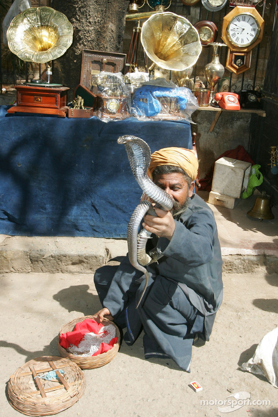 A snake charmer with a King Cobra