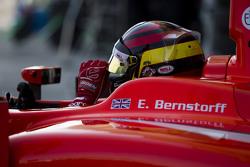 Emil Bernstorff, Arden International