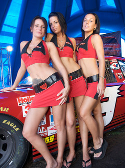 The lovely Budweiser girls