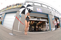 LCR Honda MotoGP Team girl
