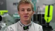 Grand Prix Insights - Seatbelt