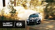 Rally Australia 2016: Winner Andreas Mikkelsen