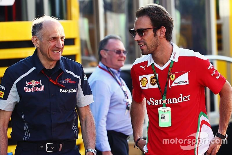 Horner, Toro Rosso'nun Vergne'e olan ilgisini doğruladı