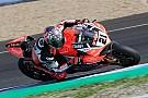 L'Aruba Racing schiererà una terza Ducati in SBK per Rinaldi nel 2018