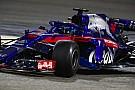 Após Bahrein, Red Bull vê Honda como possibilidade para 2019