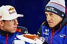 Формула 1 Тост: А чому б не провести Гран Прі на Різдво?
