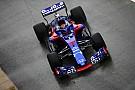 Toro Rosso: Experiência na LMP1 dá a Hartley vantagem na F1
