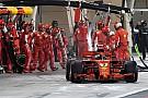 Boxenstopp-Pannen immer bei Ferrari: Wirklich nur Zufall?