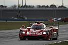 IMSA Vortest 24h Daytona: Cadillac lässt die Muskeln spielen, Alonso erstmals bei Nacht