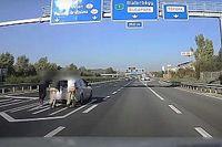 Úgy tolták a Golfot az M1-es autópálya közepén, mintha senki sem lett volna körülöttük (videó)