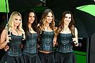 Дівчата гоночного вікенду: Формула 1, MotoGP, WTCC
