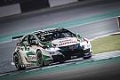 WTCC Katar: Rückschlag für Michelisz im Qualifying